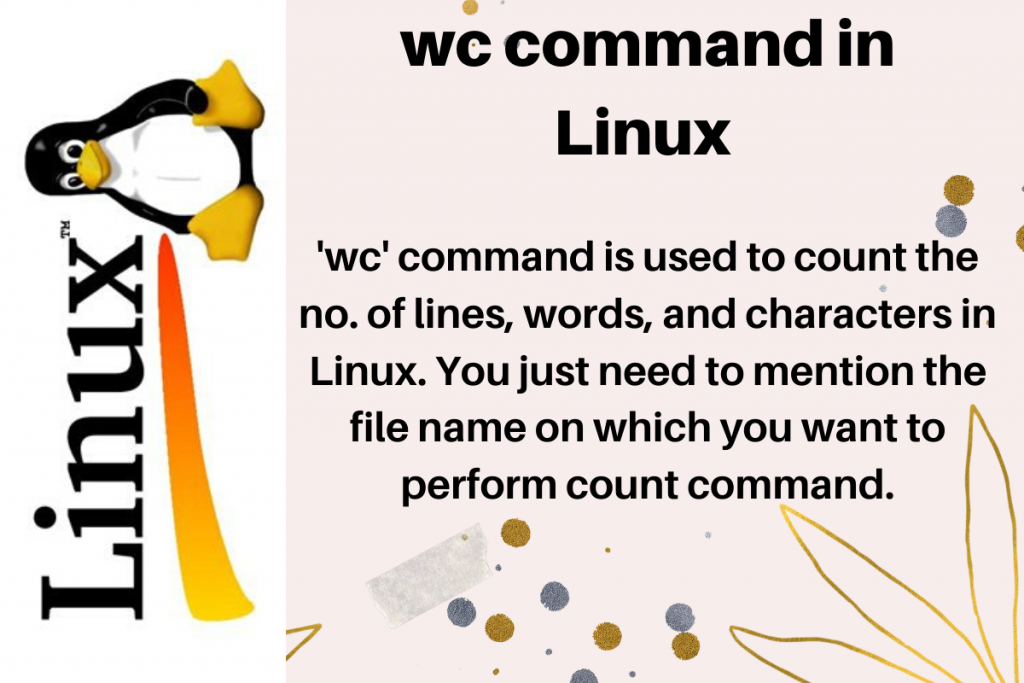 wc-command-in-Linux